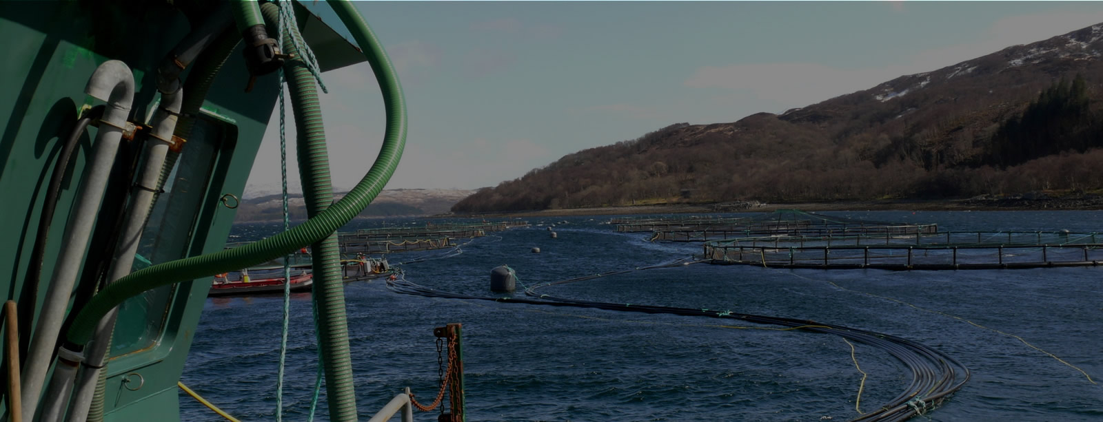 Scottish Salmon Farm