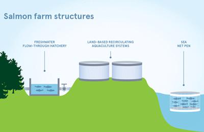 salmon farm structures